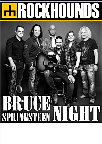 Plakat A2 Bruce Springsteen Night